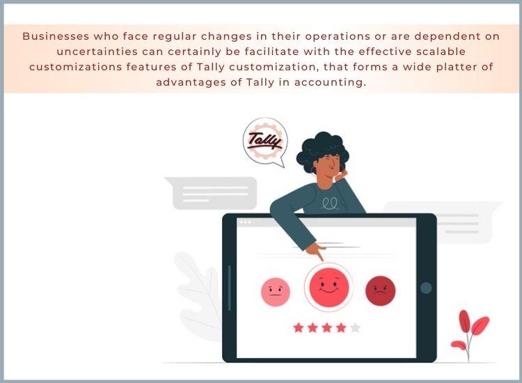 Tally customization