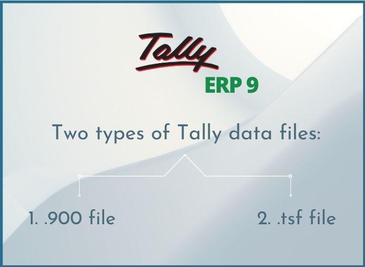 Tally data files types