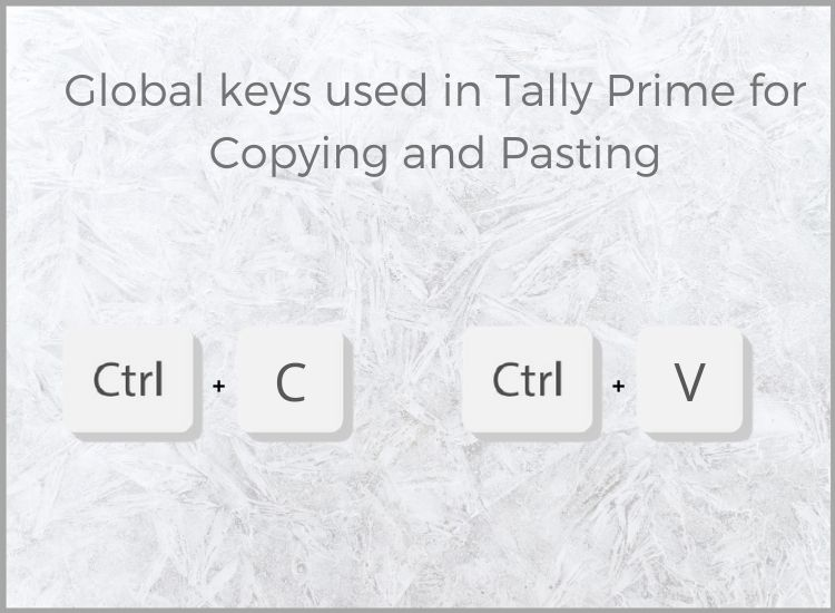 Tally prime features